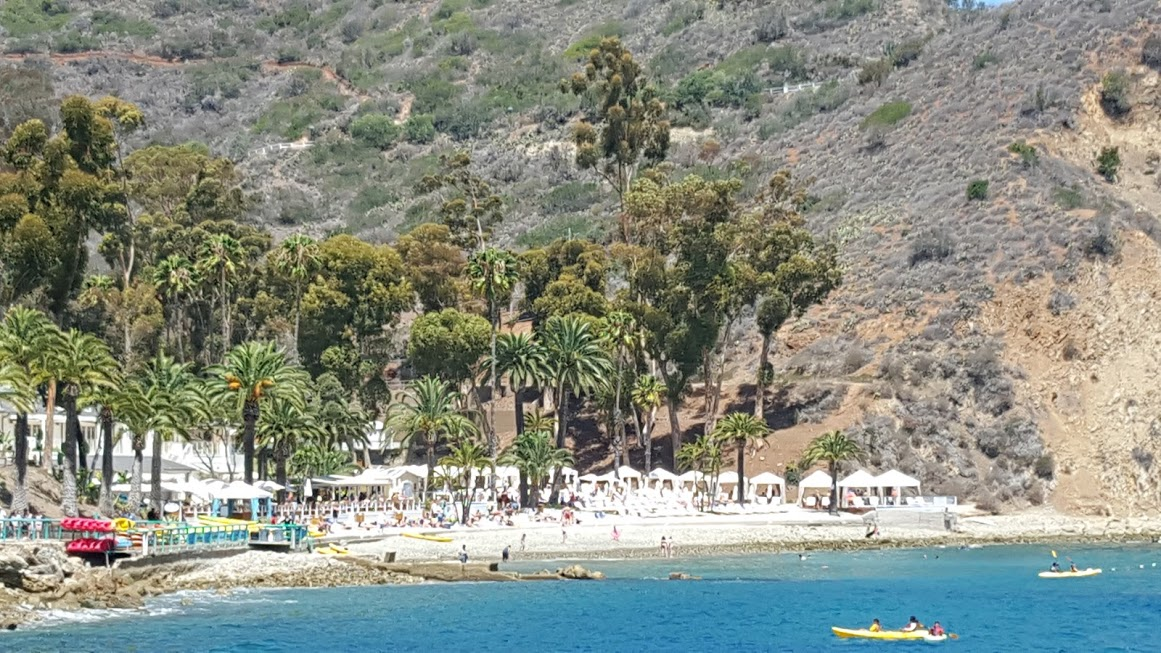 Descanso Beach Club Catalina Island Pics Trips And Tips